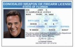 Florida Concealed Weapons Permit