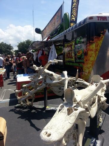 A view of the bone bike